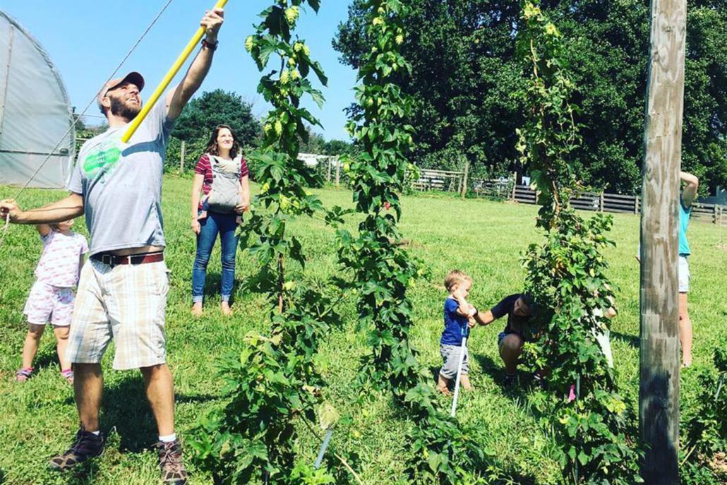 Hop Harvest Festival