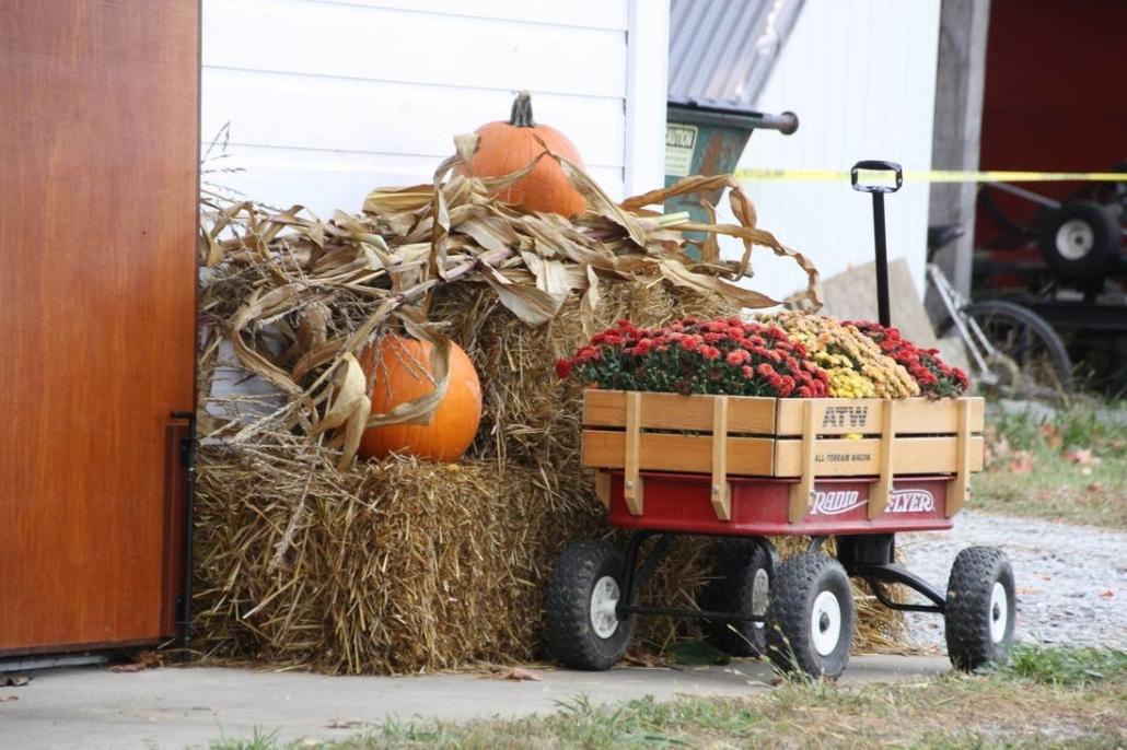 Lamppost Fall Festival