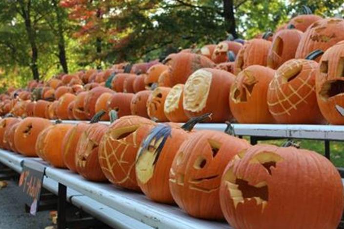 Pumpkin Carve Out