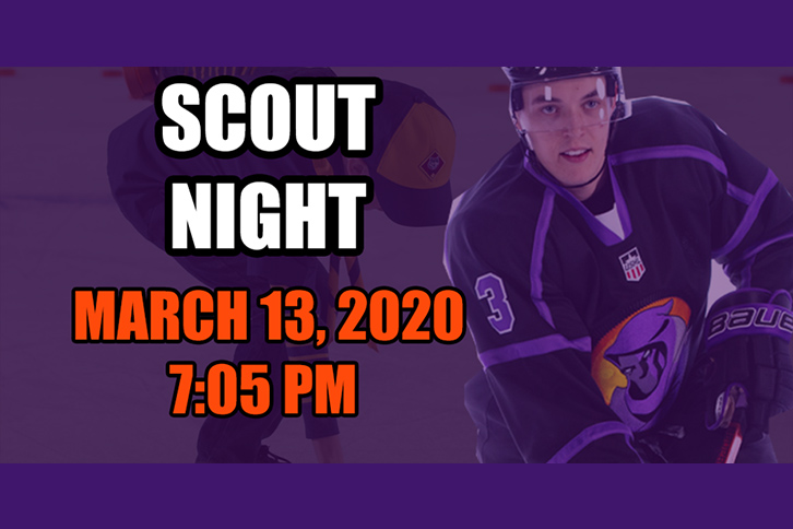 Scout Night