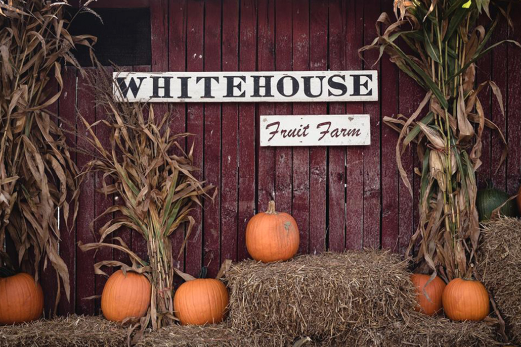 White House Fruit Farm