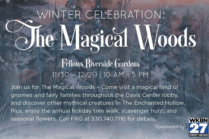 Winter Celebration The Magical Woods